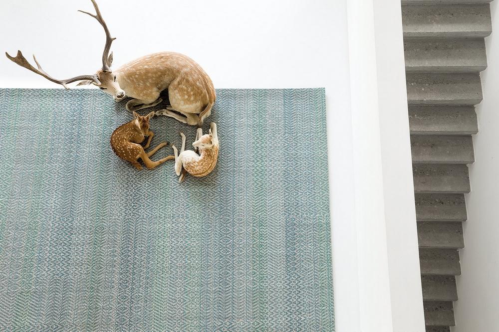 tapis limited edition fusion chez lui chez elle. Black Bedroom Furniture Sets. Home Design Ideas